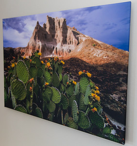 SALE DETAILS:  Nopal and tufa 20x30 wrapped print  $100 (does not include sales tax or shipping).