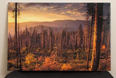 """SALE DETAILS:   16x24 Print mounted on foam core (1/4"""")                             $50 (does not include sales tax or shipping).  Normal price: $100  IMAGE DETAILS: 9904-2 Yosemite Sunset"""