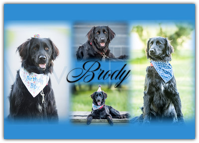 Brody Collage-2