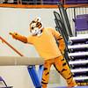 TigerPawFun041