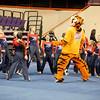 TigerPawFun014