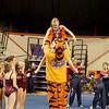 TigerPawFun015