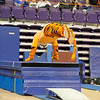 TigerPawFun044