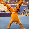 TigerPawFun009