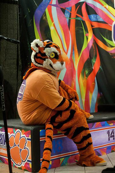 TigerPawFun077
