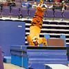 TigerPawFun046