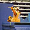 TigerPawFun049