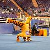 TigerPawFun004