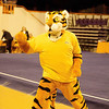 TigerPawFun023