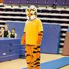 TigerPawFun042