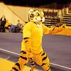 TigerPawFun024