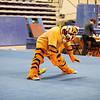 TigerPawFun002