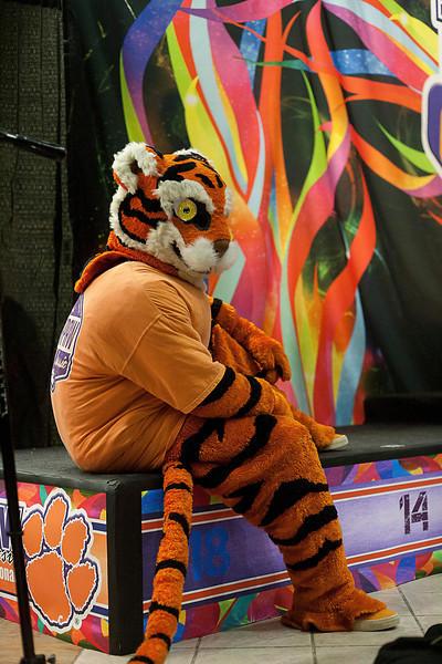 TigerPawFun078