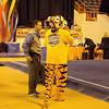 TigerPawFun016