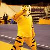 TigerPawFun022