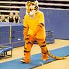 TigerPawFun043