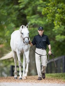 Anchor Down at Gainesway 5.28.21