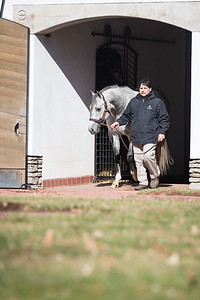 Bird Song at Gainesway 2.09.19