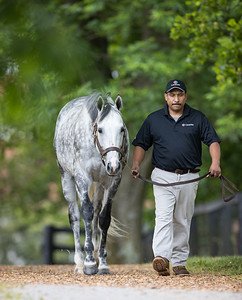 Tapwrit at Gainesway 5.28.21