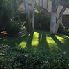 June 26, 2013: Shadows on our freshly mown lawn.
