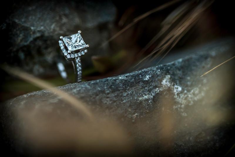 Murrietta's Wells Engagement Photos - Gwen and David-111.jpg