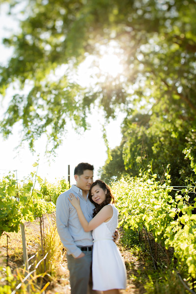 Murrietta's Wells Engagement Photos - Gwen and David-65.jpg