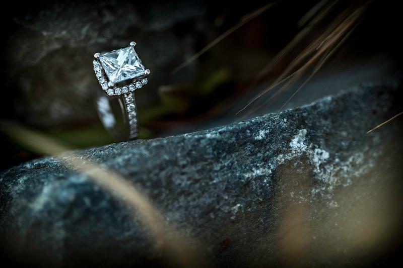 Murrietta's Wells Engagement Photos - Gwen and David-110.jpg