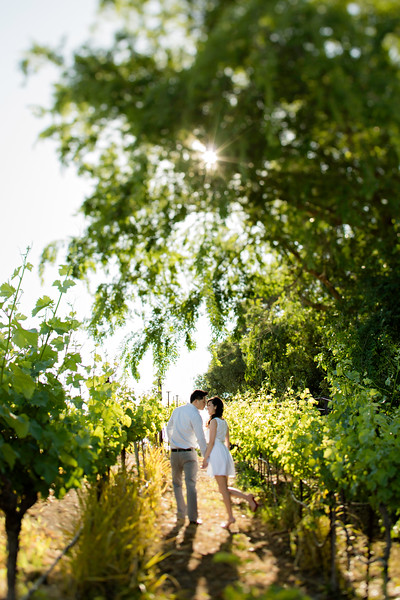 Murrietta's Wells Engagement Photos - Gwen and David-57.jpg