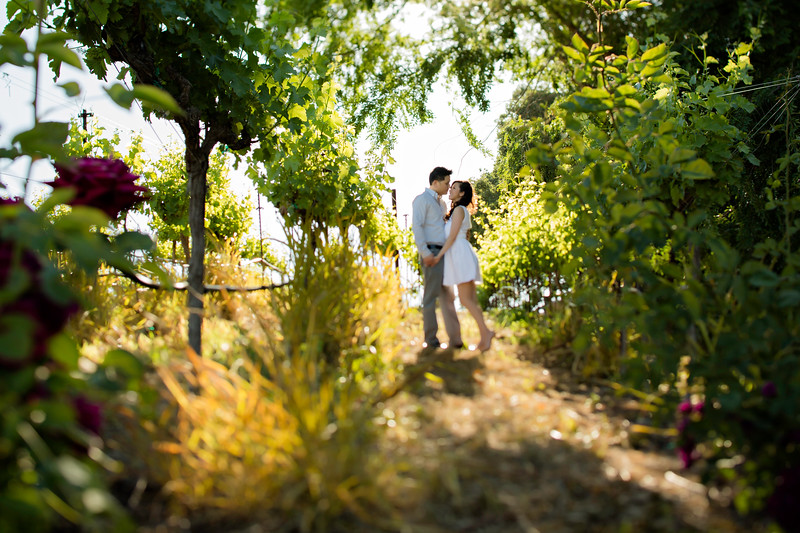 Murrietta's Wells Engagement Photos - Gwen and David-59.jpg