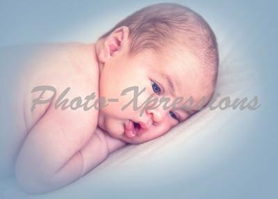 baby_8819