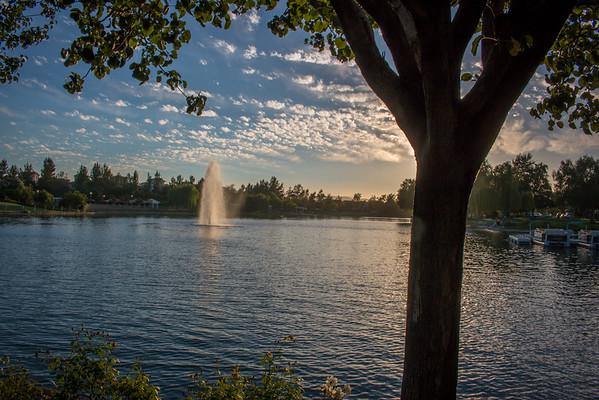 Harveston Lake- Cory