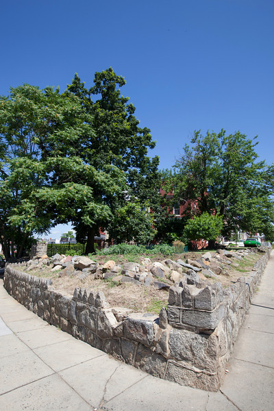 The Society's Urban Photography Series includes guided photo tours of neighborhoods in each of the District's eight wards. The tour of Park View (Ward 1) was led by Kent Boese. <br /> <br /> PICTURED: Property at Warder Street and Park Road. <br /> <br /> Shot 6/22/2013. Credit: Anne McDonough, © Historical Society of Washington, D.C.