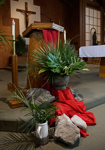 Palm Sunday 2019_1101_300 DPI