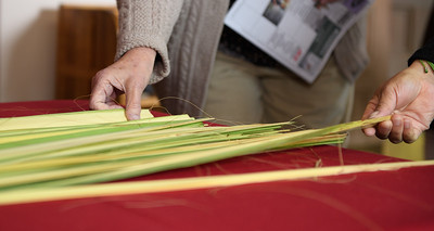 Palm Sunday 2019_1125_300 DPI