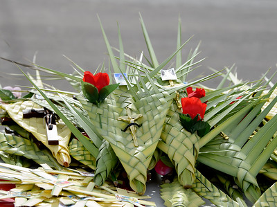 Palm Sunday 2019_6955_300 DPI