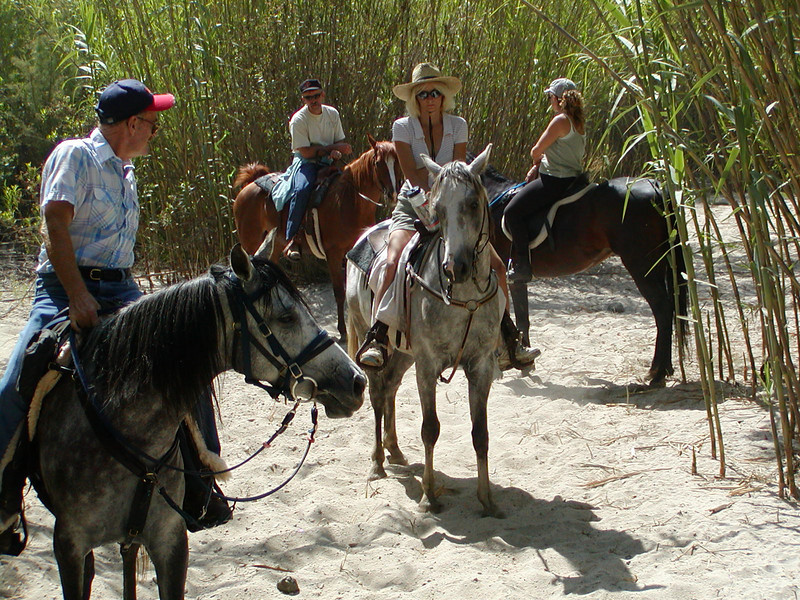 """We greet a small group of riders in the riverbed on a day when I shot Jim from behind as a virtual tour of the riverbed.  Promotion for the ride.  It was exciting to ride my mare without reins through the arundo """"twisties"""", Jim and Bullet were good models.  I think that's Tonya in the center, the others I didn't know."""