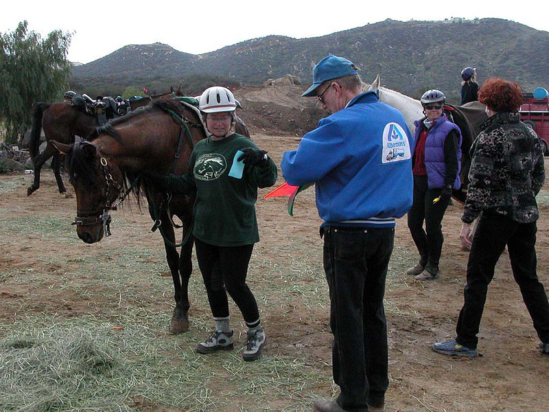 2003 Bar H Boogie, vet 1.  Barb Thomas hands her in time slip to Jim as he mans the P&R box.  Looks like Cheryl Searer to his right in the vest.