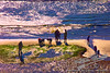 by Jack Foster Mancilla - LensLord™<br /> _MG_8423