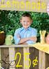 lemonade-442-2
