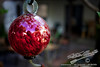 by Jack Foster Mancilla - LensLord™<br /> _MG_1664