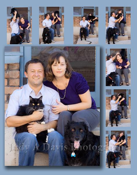 Cat Collage<br /> Natural Light Family Portraits, Judy A Davis Photography, Tucson, Arizona