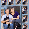 Cat Collage<br /> Natural Light Family Portraits, Judy A Davis Photography, Tucson, Arizona