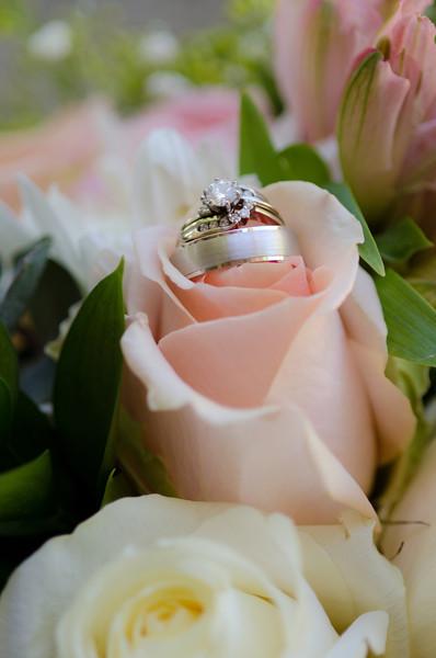 Kelsey & Colin Wedding Highlights-0003