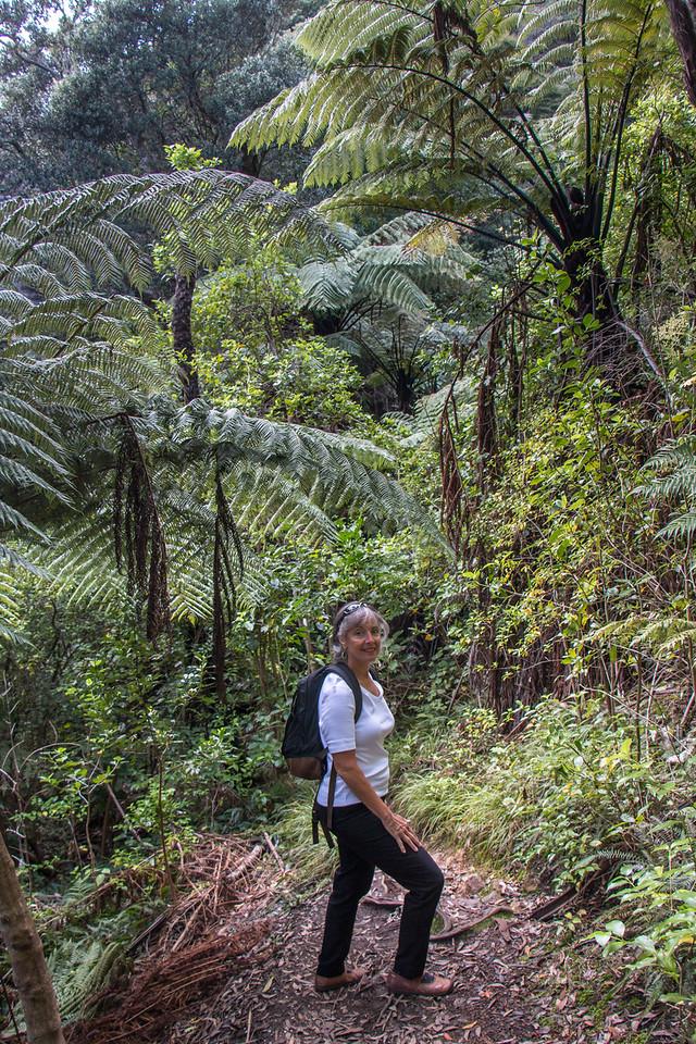 Brenda hiking Mt Pauanui 5572