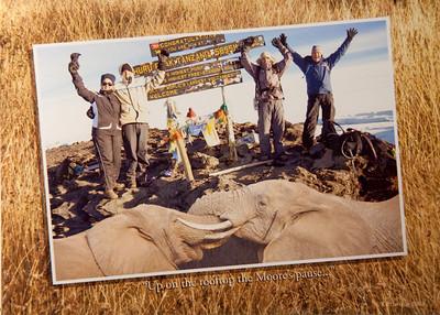 2008 Kilimanjaro