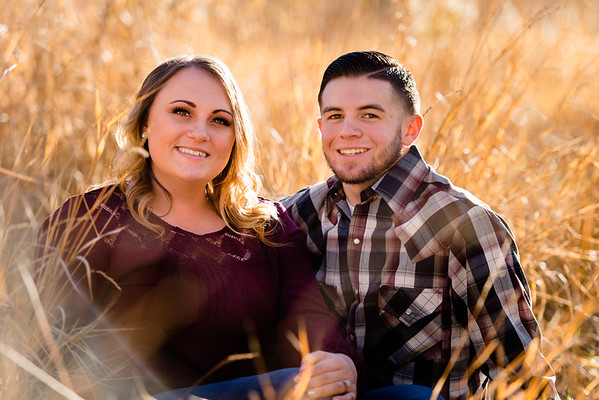 wedding-engagement-wheeler-farm-802615