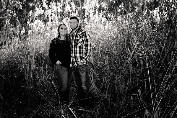 wedding-engagement-wheeler-farm-812587-2