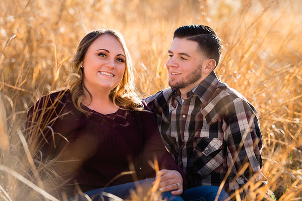 wedding-engagement-wheeler-farm-802619