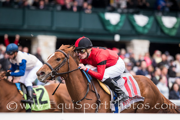 Flak runs in an Maiden race at Keeneland 4.12.2013