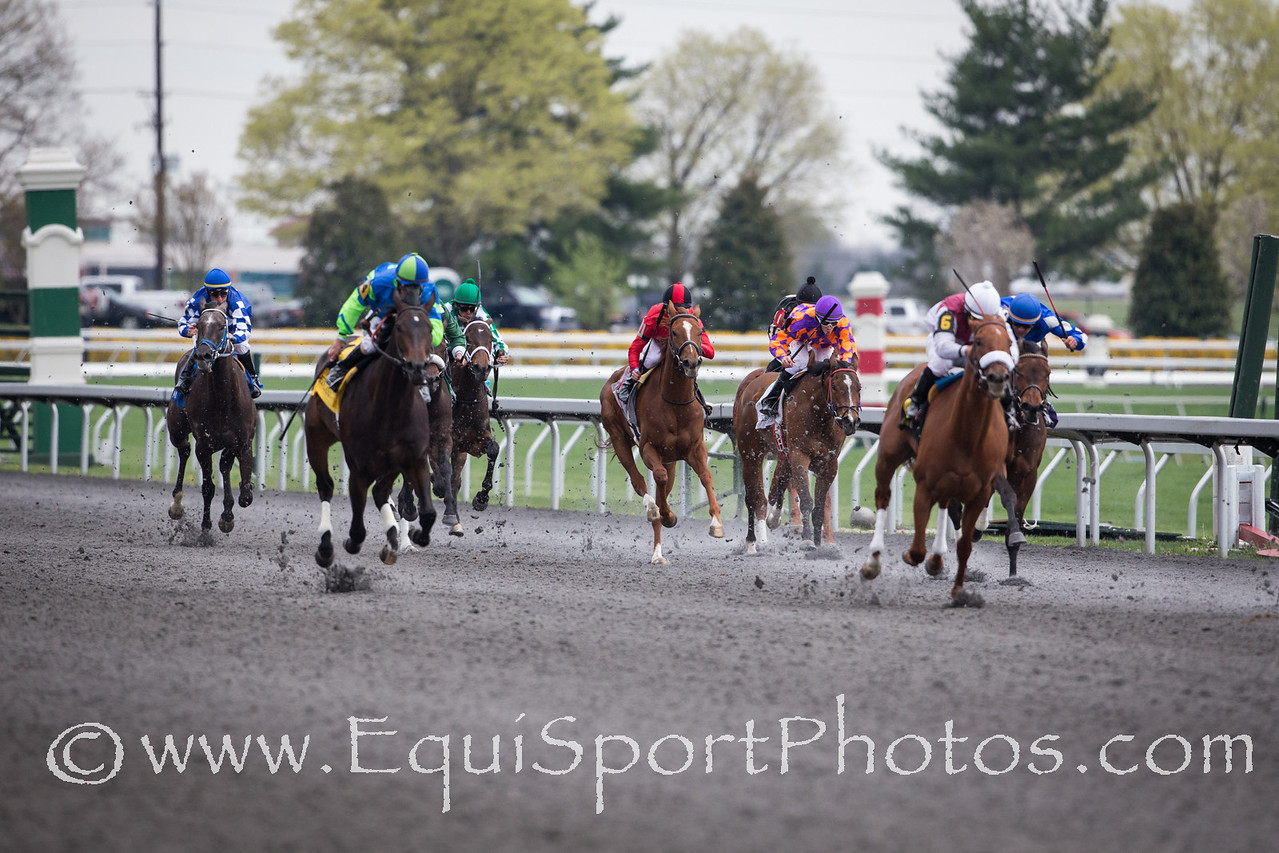 Flak (Malibu Moon) in a Maiden race at Keeneland on 4.12.2013.  Julien Leparoux up, Kenny McPeek trainer, Ray Struder owner.
